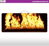 Firewall / Feuerwand zur Miete